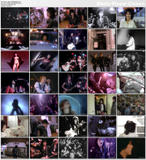 Joan Jett & The Blackhearts ~  Video Anthology  (20 Videos)
