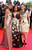 th_78037_Celebutopia-Noemie_Lenoir-Synecdoche5_New_York_premiere_during_the_61st_International_Cannes_Film_Festival-15_122_494lo.jpg