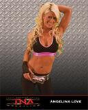 TNA Knockouts Promo Pics ~ Velvet Sky, Angelina Love, Christy Hemme, etc